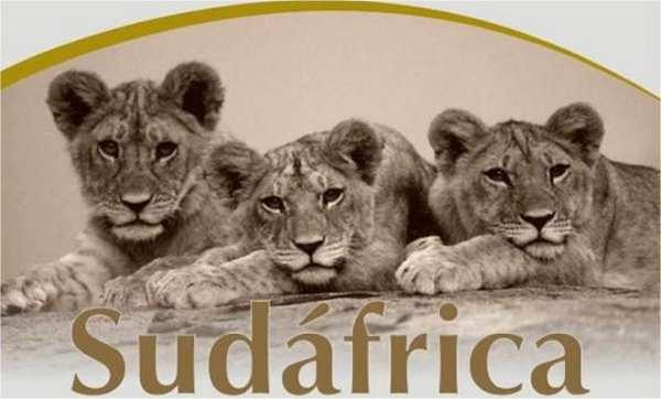 Hacer Ecoturismo en Sudáfrica – Que conocer, a donde ir