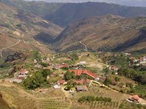 El Jarillo