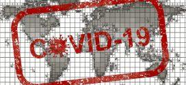 😷El coronavirus paraliza el sector turístico🦇